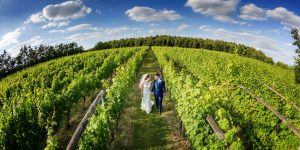 Wedding photography at Dedham Vale Vineyard Essex